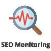 consultant référencement seo Packs Netlinking